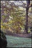 view Knoxville -- Skeeter Hill digital asset: Knoxville -- Skeeter Hill