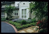 view Memphis -- Irwin L. Zanone Garden digital asset: Memphis -- Irwin L. Zanone Garden
