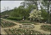 view Nashville -- Banks Garden digital asset: Nashville -- Banks Garden