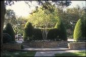 view Dallas -- Sewell Garden digital asset: Dallas -- Sewell Garden