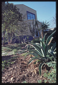 view San Antonio -- Jardin De Mil Flores digital asset: San Antonio -- Jardin De Mil Flores