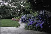 view Dallas -- Home of Mr. & Mrs. Jon Mosle digital asset: Dallas -- Home of Mr. & Mrs. Jon Mosle