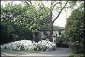 view Dallas -- Maclay Garden digital asset: Dallas -- Maclay Garden