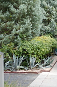 view San Antonio -- Selig Garden digital asset: San Antonio -- Selig Garden