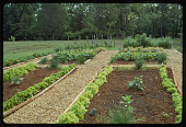 view Garden Images digital asset: Garden Images