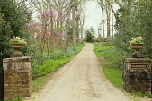 view Warrenton -- Appleton Gardens of Marshfield digital asset: Warrenton -- Appleton Gardens of Marshfield