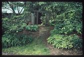 view Marshall -- Poke Garden digital asset: Marshall -- Poke Garden