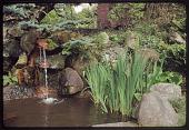 view Seattle -- Greer Garden digital asset: Seattle -- Greer Garden