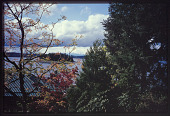 view Gig Harbor -- Hillside Gardens digital asset: Gig Harbor -- Hillside Gardens