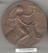 view Medal, Samuel P. Langley Medal, Orville and Wilbur Wright, 1909 digital asset number 1