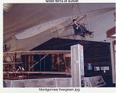 """view Montgomery Glider """"Evergreen"""" digital asset number 1"""