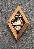 view Pin, Lapel, Fraternity, Sigma Alpha Epsilon, Robert H. Goddard digital asset number 1