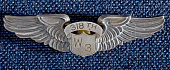 view Badge, Pilot, Women Airforce Service Pilots (WASP), Graba digital asset number 1