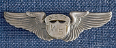 view Badge, Pilot, Women Airforce Service Pilots (WASP), McCormick digital asset number 1