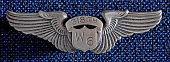 view Badge, Pilot, Women Airforce Service Pilots , Story digital asset number 1