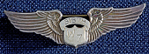 view Badge, Pilot, Women Airforce Service Pilots (WASP), Chapin digital asset number 1