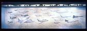 view Jet Aviation Mural digital asset number 1