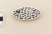 view Brooch/Pin depicting a submerged whale digital asset number 1