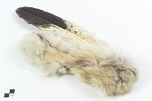 view Headband with feather/plume digital asset number 1