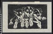 view Pup Huskies digital asset number 1