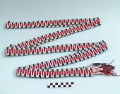 view Cradleboard wrapper digital asset number 1