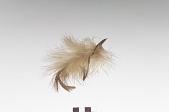 view Hair ornament digital asset number 1
