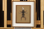 view Black Ant Personage digital asset number 1