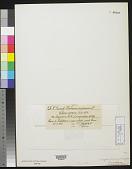 view Chara aspera f. singularis L.J. Wahlstedt digital asset number 1