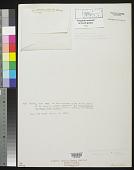 view Amphiroa gracilis Harv. digital asset number 1