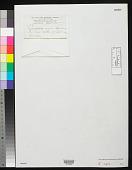 view Endospora nigra N.L. Gardner digital asset number 1