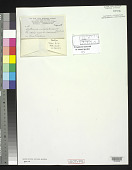 view Scytonema subgelatinosum N.L. Gardner digital asset number 1