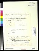 view Ulva papyracea Schleicher ex Poir. digital asset number 1