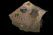 view Opal digital asset number 1