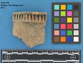 view Rimsherds, Stanley Tool Impressed Type, Fort Yates Incised Type digital asset number 1