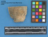 view Rimsherds, Unnamed Type Fort Yates Rim Form EMM digital asset number 1