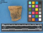 view Rim Sherds, Iona Indented type digital asset number 1