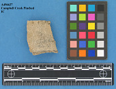 view Rim Sherd: Campbell Creek Indented, Campbell Creek Pinched digital asset number 1