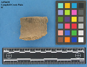 view Rim Sherds: Campbell Creek Cord Marked, Campbell Creek Plain Type digital asset number 1