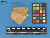 view Rim Sherd: Campbell Creek Cord Marked digital asset number 1