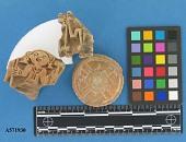 view Stamps, flat digital asset number 1