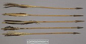 view 1 Quiver (Lynx Skin) And 13 Arrows digital asset number 1
