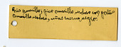 view Columba fasciata albilinea digital asset number 1