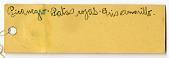 view Zenaida auriculata pentheria digital asset number 1
