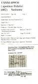 view Leporinus friderici digital asset number 1