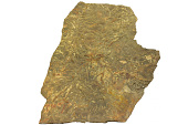 view Trace Fossils digital asset number 1