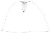 view Lingnania fimbriligulata McClure digital asset number 1