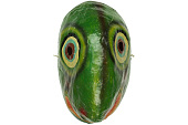 view Carnival Turtle Mask digital asset number 1