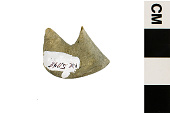 view Fossil Ray-finned Fish digital asset number 1
