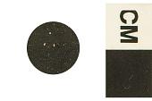 view Foram, Foraminifera digital asset number 1