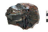 view Flake, Material for Prehistoric Stone Tools digital asset number 1